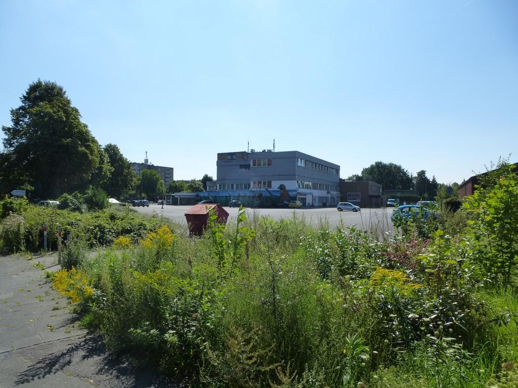 Am Kiesekampweg in Coerde soll ein Wohnquartier mit Lebensmittelmarkt und Kita entstehen. Foto: Stadt Münster.