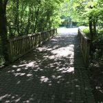 Holzbrücke über den Kinderbach an der Martin-Niemöller-Straße. Foto: Stadt Münster.